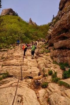 Climbing Dinosaur Ridge!