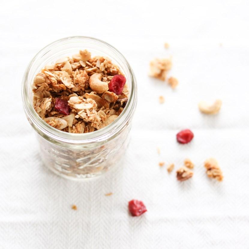 Homemade granola cranberrries