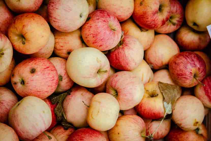 apples in the st remy market Provence