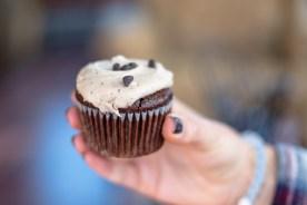 Mocha-Chocolate Cupcake