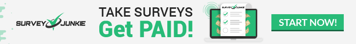 Survey Junkie, with over 10 million users, are one of the top paid survey sites around.