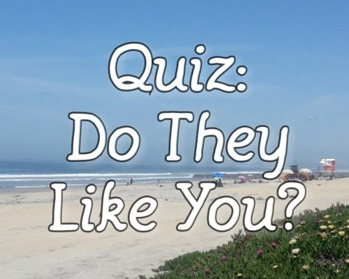 Does he like me – Live Love Quiz