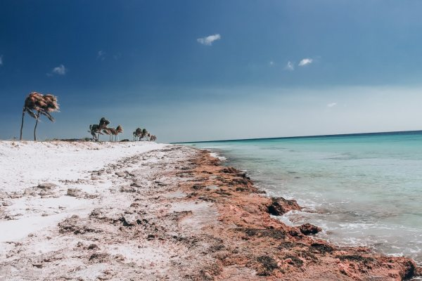 Pink Beach in Bonaire is not really all that pink, but it is still beautiful and perfect for snorkeling or enjoying the views. Find the best things to do in Bonaire on a cruise (or a longer stay) here.