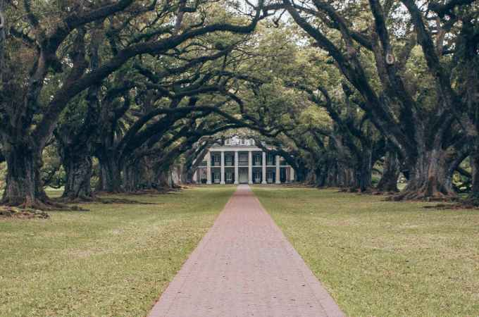 Oak Alley Plantation is one of the most popular things to do in New Orleans. Click here for a full 4 day New Orleans itinerary + map. #neworleans #oakalleyplantation | New Orleans houses | New Orleans plantations | New Orleans in 4 Days | 4 Days in New Orleans | New Orleans 4 day itinerary | New Orleans in spring | New Orleans photo spots | New Orleans Louisiana | New Orleans things to do in | what to do in New Orleans