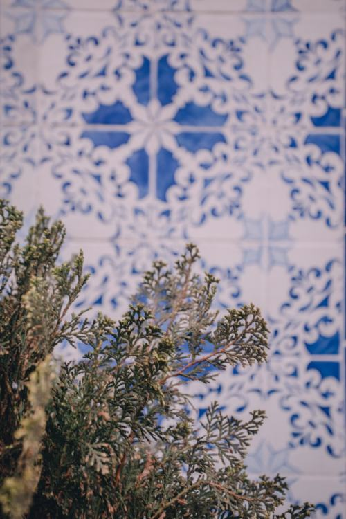 Tiles on a building in Bairro Alto in Lisbon, Portugal. Find the best photo spots in Lisbon, Portugal here!