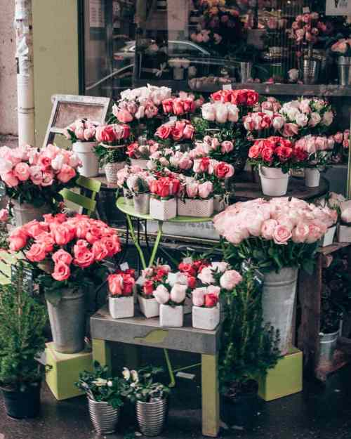 A flower shop in Paris on New Year's Eve. Find the best photo spots in Paris and a full guide to New Year's in Paris here.