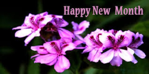 50 Happy New Month Messages May, New Month Prayers For May