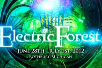 electric-forest-500x246