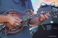 Paul Hoffman's Guitar, Greensky Bluegrass at Big Meadow, HSMF 2012
