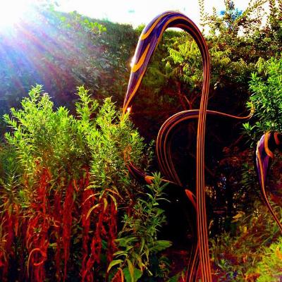 Chihuly Exhibit, Denver Botanical Gardens   Photo by Jeff Yeatman
