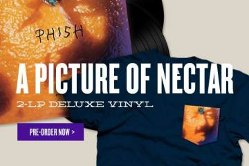 phish a picture of nectar vinyl