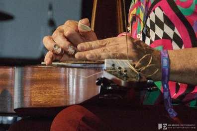 David Lindley @ Arroyo Seco Weekend 6.25.17 © Jim Brock/LIVE music blog