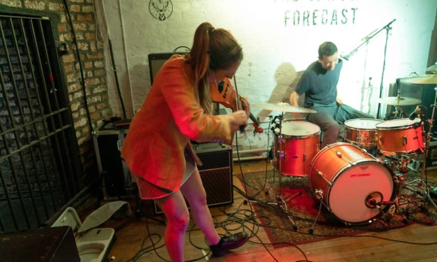 Dry Cleaning + Pozi: Shipping Forecast – Photo Review