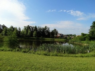 Lockhart Meadows Pond