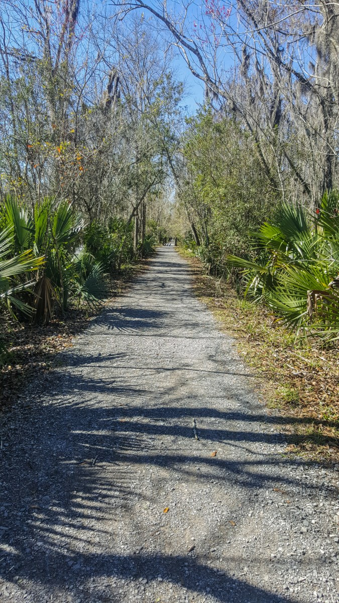 Bayou Coquille Trail. Very straight, very maintained.