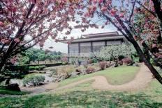 giardinogiapponeseroma2015
