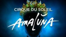 amaluna1
