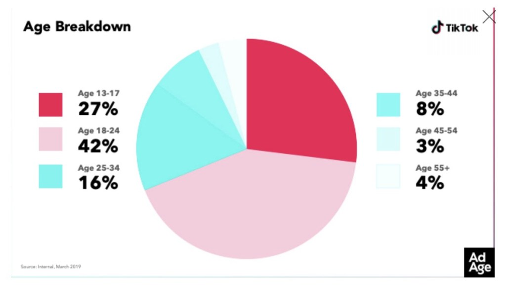 Age breakdown of TikTok users in 2019
