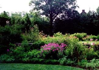 Kenmore's Gardens 5