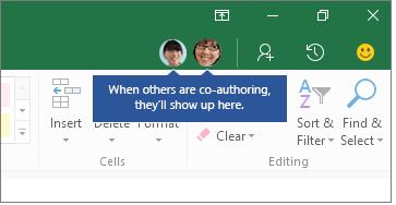 excel-windows-coauthor