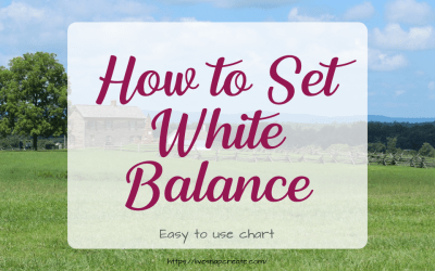 How to Set White Balance
