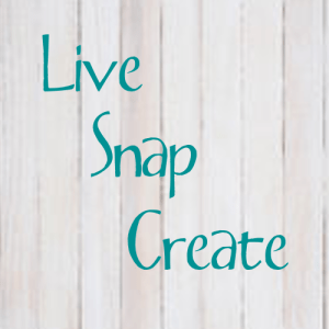 Live Snap Create Logo