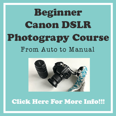 Beginner Canon DSLR Course