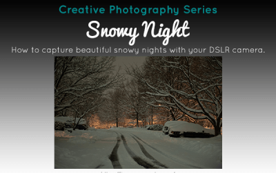 Creative Series: Snowy Night