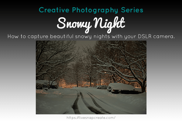 Creative Series: Snowy Night