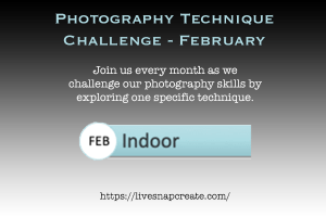 Photography Technique Challenge February - Indoor