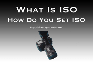 What is ISO, How Do You Set ISO, DSLR Camera Image