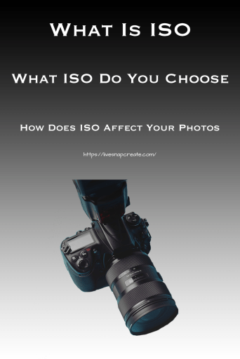 What is ISO, What ISO Do You Choose, How Does ISO Affect Your Photos, DSLR camera image