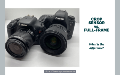 Crop Sensor vs Full Frame Sensor DSLR Cameras