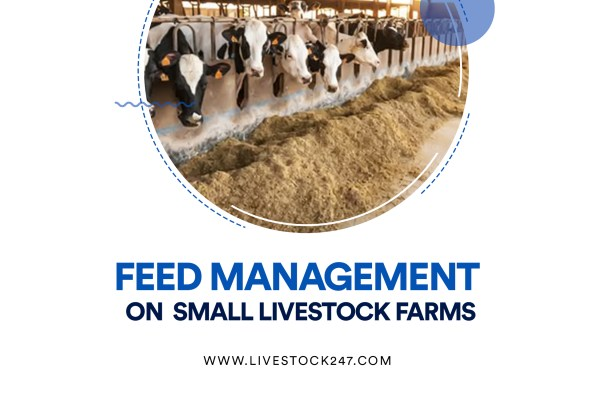 Feed Management on Small Livestock Farms