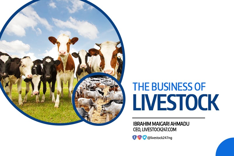 The Business of Livestock