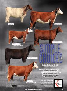 Kolt Cattle Simple Choices Sale @ Seward   Nebraska   United States