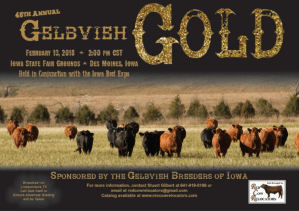Gelbvieh Gold @ Iowa State Fairgrounds | Des Moines | Iowa | United States