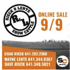 Reick & Lents Show Cattle Online Sale