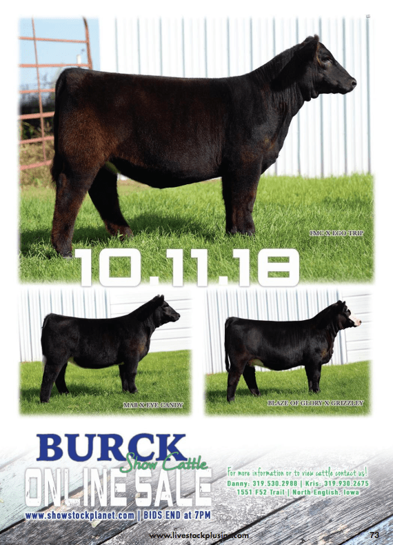 Burck Show Cattle Online Sale on October 11th, 2018.