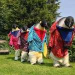 Giant Penguins
