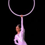 Illuminated Aerial Hoop