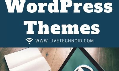 Free WordPress Themes or Premium WordPress Themes