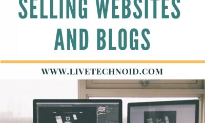 How to Make Money Online Selling Websites and Blogs