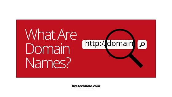 What are domain names?