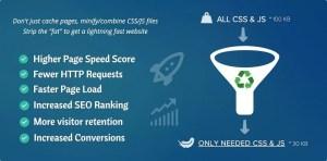 Asset CleanUp Pro v1.1.9.1 WordPress Plugin Free Download