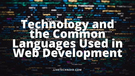 Technology and the Common Languages Used in Web Development