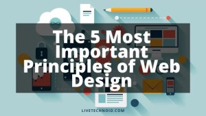 5 Most Important Principles of Web Design