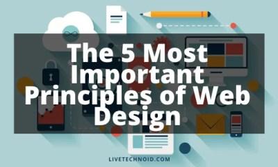 5 Most Important Principles of Web Design