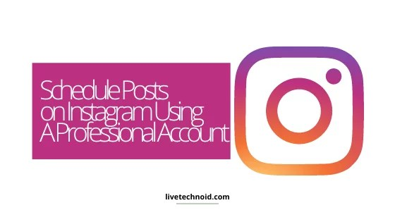 Schedule Posts on Instagram Using A Professional Account