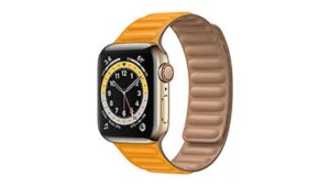Apple Watch Series 6 Stainless Steel Full Specifications and Price